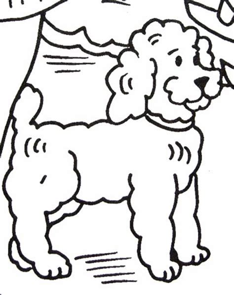 coloring pages poodle 733 best images about coloring pages for free on