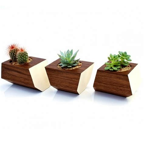 Planters Walnuts by Stylish Walnut Boxcar Planter For Succulents