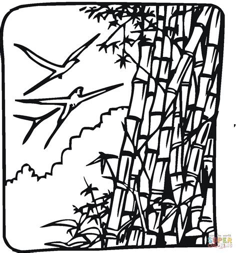 bamboo and birds coloring page free printable coloring pages