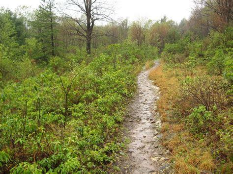 Wv Botanic Garden Top Spots For Leaf Peeping In Greater Morgantown Morgantown Wv