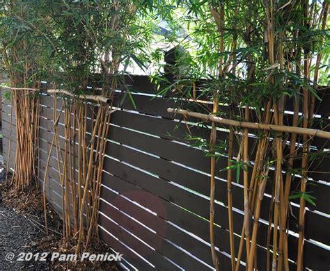 Bamboo Garden Houston by Houston Open Days Tour 2012 Cortlandt Garden Diggingdigging