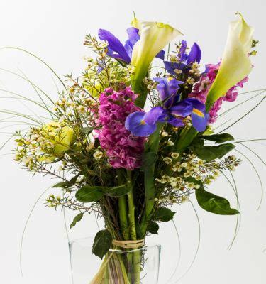 fiori a gambo lungo nascita fiori piante e bouquet capoverde uno spazio