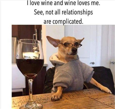 complicated wine quotes wine jokes wine meme