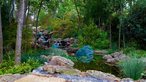 Botanical Garden In Dallas Vacations 2017 Explore Cheap Vacation Packages Expedia
