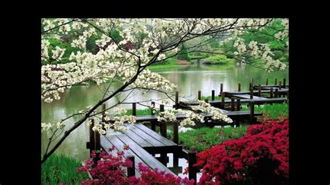 imagenes de jardines orientales jardines japoneses hd 3d arte y jardiner 237 a dise 241 o de