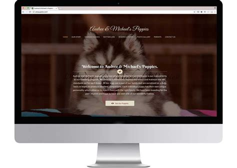 breeders websites audree michael s puppies clifton creative web