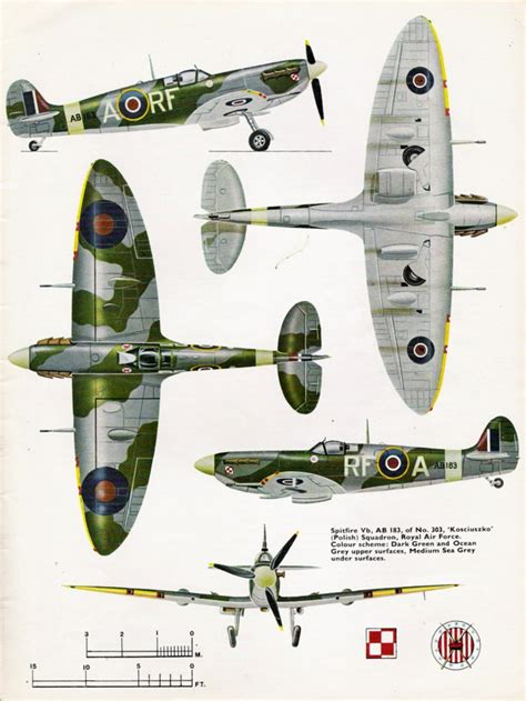 121st raf squadron markings spitfire camouflage markings raf 303 polish squadron
