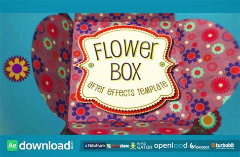 flower logo videohive free download free after flower box display free download videohive project