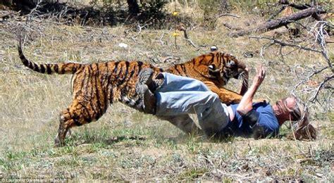 Modi?s close encounter with a tiger