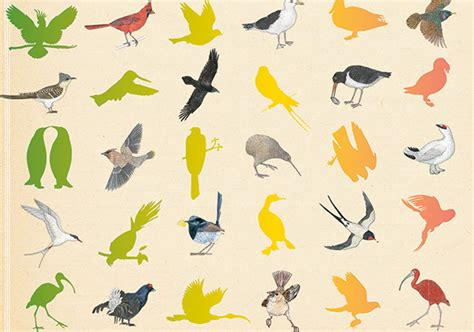 inventario ilustrado de aves invent 225 rio ilustrado das aves virginie aladjidi e emmanuelle tchoukriel deusmelivro