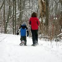 Mn Landscape Arboretum Ski Trails Ski And Snowshoe Information
