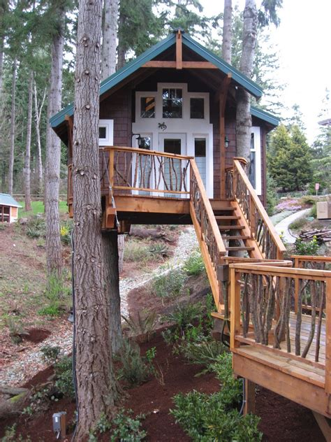 simple tree house designs pictures of tree houses and play houses from around the