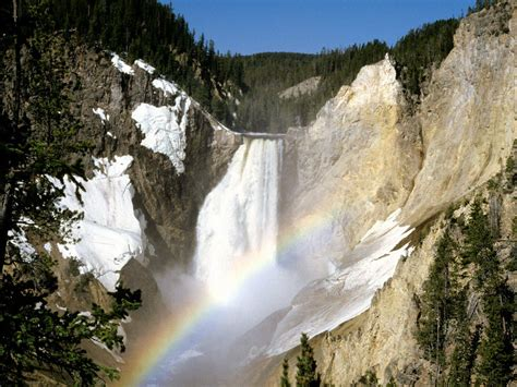 yellowstone national park yellowstone national park at wyoming united states
