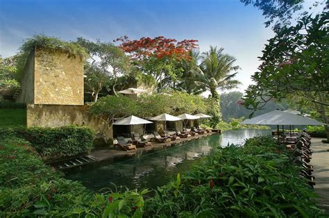 best hotels in ubud 10 best luxury hotels in ubud most popular 5 star hotels