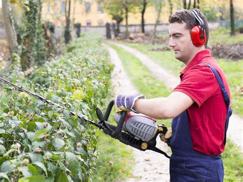 giardiniere bergamo giardinieri affidabili a lecco como e bergamo