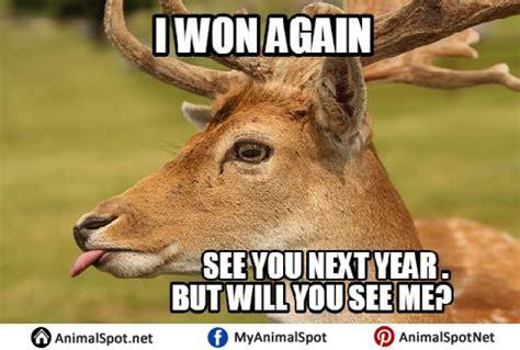Funny Hunting Memes - deer memes