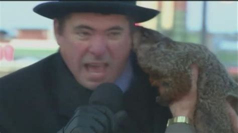 groundhog day jimmy jimmy the groundhog takes a bite out of sun prairie mayor