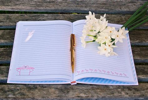 free photo journal pen flowers write diary free