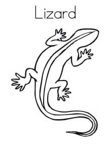 lizard coloring pages free printable lizard coloring pages for