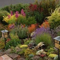 1000 images about zone 9 sunset zone 20 plants on pinterest shrubs drought tolerant and plants