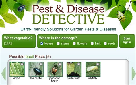 garden pest detective sleuths what pests diseases are
