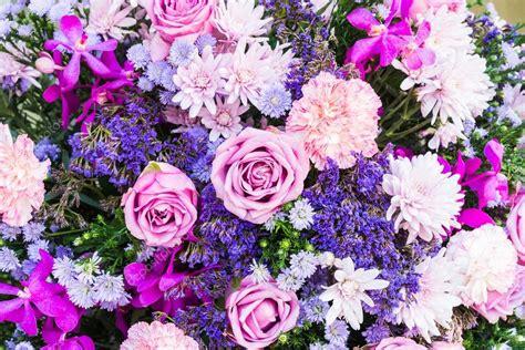 fiori per sfondi sfondi di fiori colorati foto stock 169 mrsiraphol 61095665