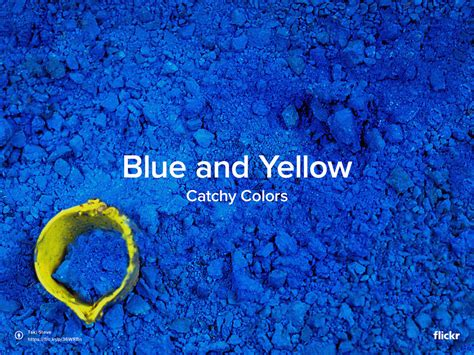 catchy colors blue and yellow flickr blog