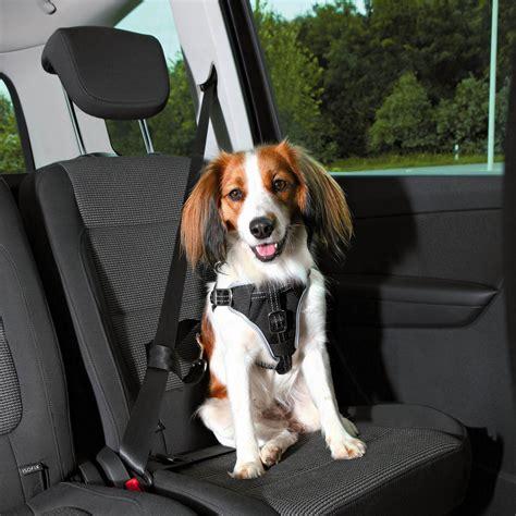 Hundegurt Auto by Trixie Auto Geschirr Protect Hundegurt Anschnaller