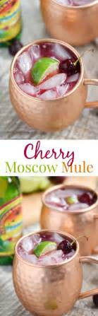 Summer Reading Cocktail With A Twist by Best 25 Cherry Vodka Ideas On Cherry Vodka