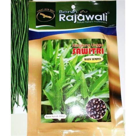 Jual Bibit Sayuran Kangkung jual benih kangkung unggul sawitri