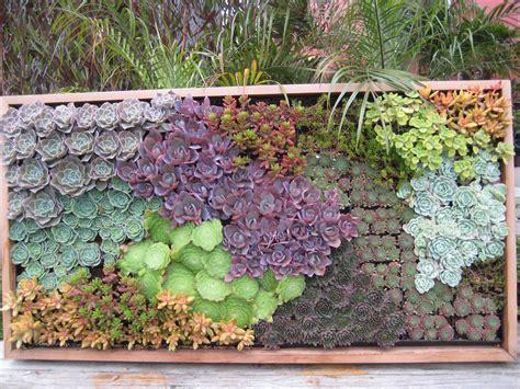 Jostian Inspiration 2 California Gardening Jostification Wall Succulent Garden