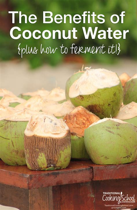 benefits of coconut water how to ferment it