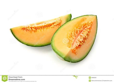 Melon Sweet sweet baby melon stock photo image of ripe white summer