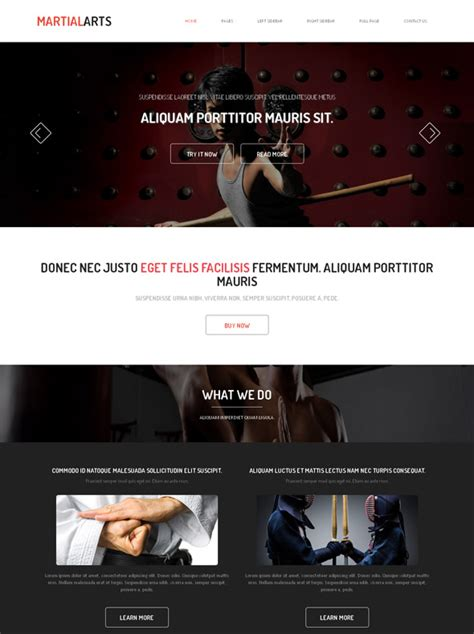 website templates for karate kung fu website template martial arts website