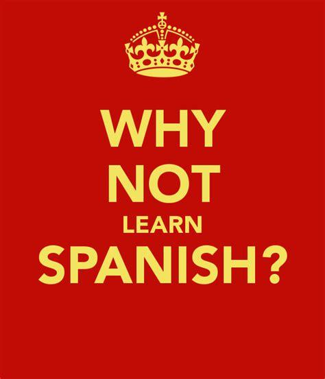 learn spanish in mexico myideasbedroom com