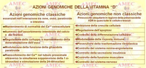alimenti contenenti vitamina d notiziario novembre 2011 n 176 10 vitamina d e malattie