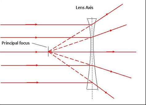 diverging lens diagram lesson 7 lenses and the eye year 9 science