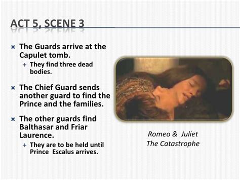Free Essays On Romeo And Juliet Act 3 1 by Act 3 5 Romeo And Juliet Essay Help Implicitthesis