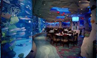 Floor And Decor San Antonio Texas aquarium restaurants