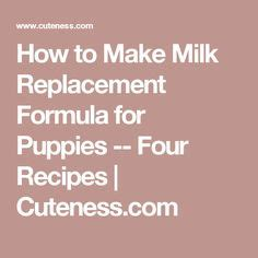 how to make puppy formula best puppy milk replacer recipe on