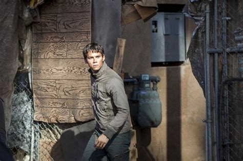 maze runner the scorch trials maze runner the death cure release date set for january