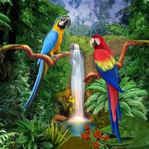 Animal Print Duvet Cover Macaw Tropical Parrots Digital Art By Glenn Holbrook