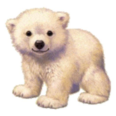 imagenes animadas gif de amor dibujos animados de osos polares gifs de animales gt osos