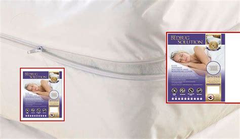 bed bugs solution bed bugs solution 5 bed bug facts that you should know