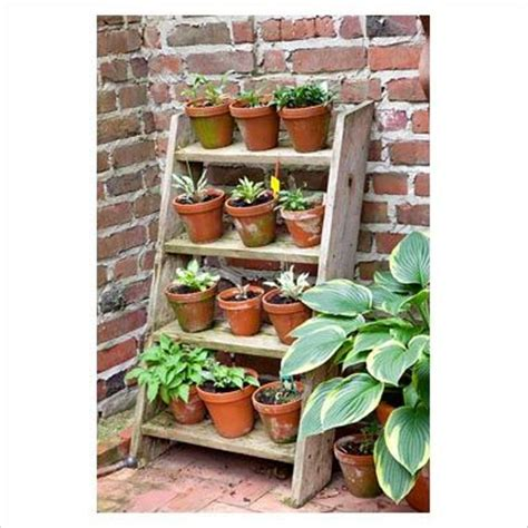 best 25 garden ladder ideas on pinterest