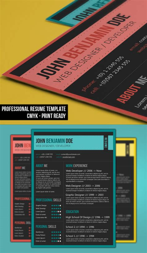 professional resume template 2013 professional resume template by bhertzel on deviantart