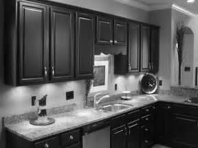dark kitchen cabinets  grey walls outofhome ideas