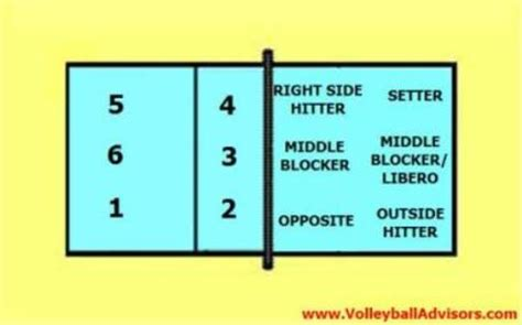 6 positions of volleyball learning six volleyball court