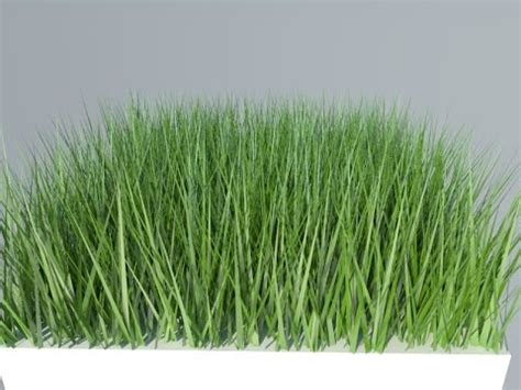 vray sketchup grass tutorial come creare erba in vray sketchup how to create grass in