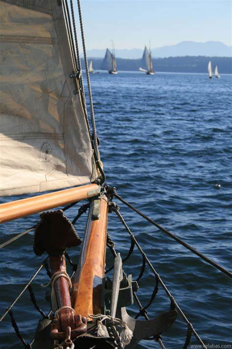 wooden boat bow wooden boat festival photos from port townsend wa